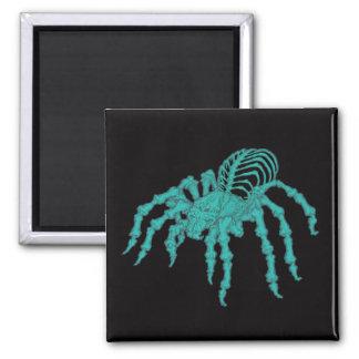 Skeletal Tarantula Magnet