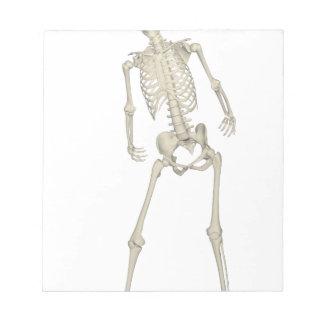 Skeleton #7 notepad