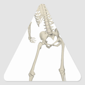 Skeleton #7 triangle sticker