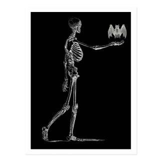 Skeleton and Bat Postcard