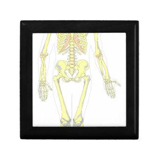 Skeleton Gift Box