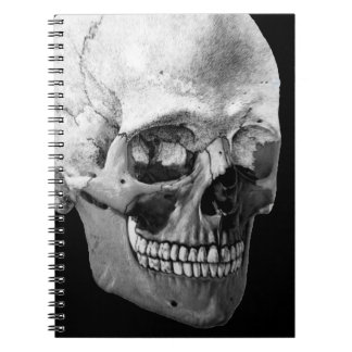 Skeleton head notebook