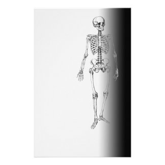 Skeleton Horror Goth Halloween Scary Stationery