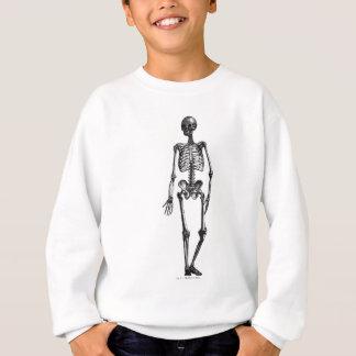 Skeleton - Human Body - Vintage Line Drawing Sweatshirt