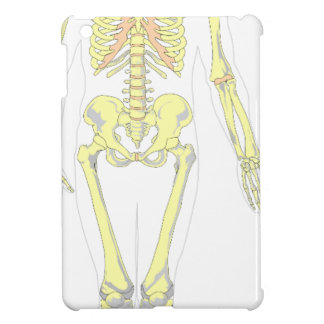 Skeleton iPad Mini Cases
