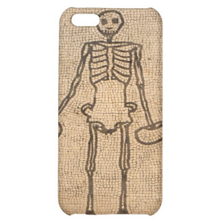 skeleton case for iPhone 5C