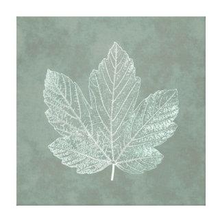 Skeleton Maple Leaf Botanical Stretched Canvas Prints