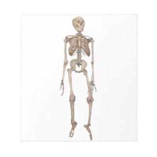 Skeleton Note Pads