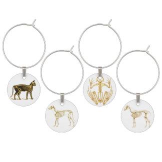 Skeleton of Horse, Dog, Cat and Frog Wine Charm