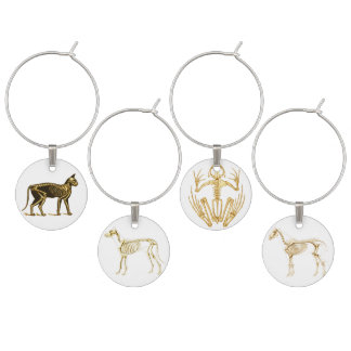 Skeleton of Horse, Dog, Cat and Frog Wine Glass Charm