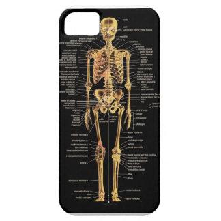 Skeleton phone cover