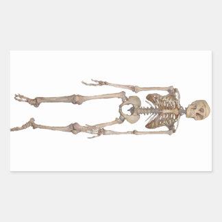 Skeleton Rectangle Stickers