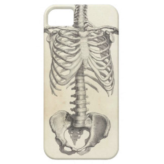 Skeleton Torso Case For The iPhone 5