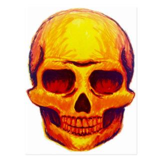 Sketch Skull Postcard