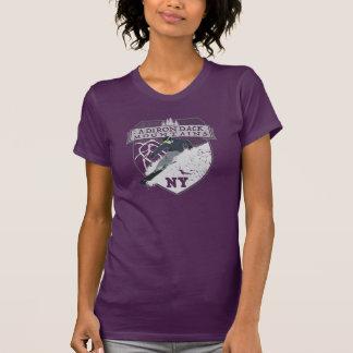 Ski Adirondack Mountains, NY T-Shirt