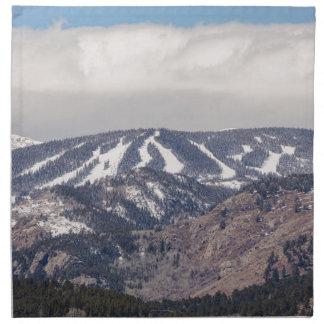 Ski Slope Dreaming Napkin
