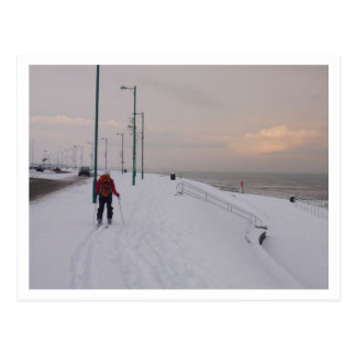 Skier by the Beach Postcard