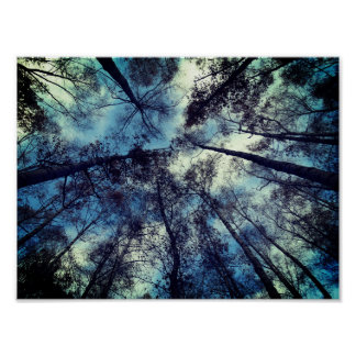 Skies Poetic Moment Value Poster Paper (Matte)