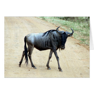 skinny wildebeest card