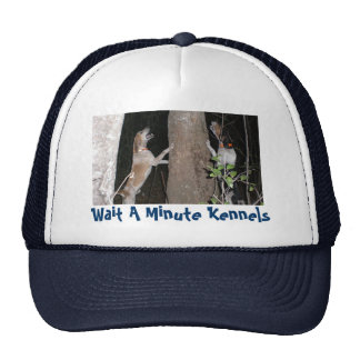 Skip & Chase,Wait A Minute Kennels - Customized Mesh Hats