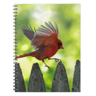 Skipping-Pickets jpg Journals