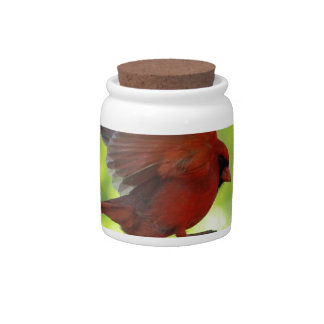 Skipping-Pickets.jpg Candy Jar