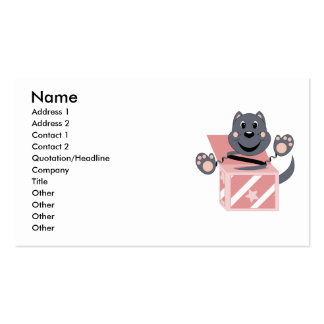 Skrunchkin Cat Smokey In Pink Box Business Cards
