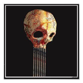 skull 2 photograph