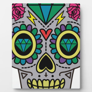 Skull Abstract Plaque