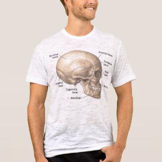 Skull Anatomy vintage style mens tshirt
