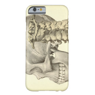 Skull and Cervical Spine Phone Cover Barely There iPhone 6 Case