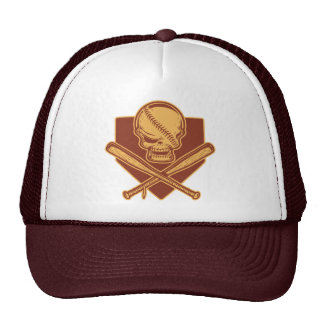 Skull & Crossed Bats 513 Cap