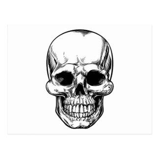 Skull Drawing Postcard