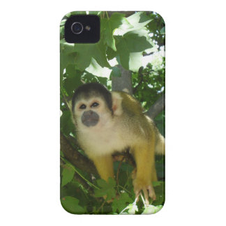 Skull little monkey mobile phone covering iPhone 4 case