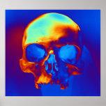 Skull Posters