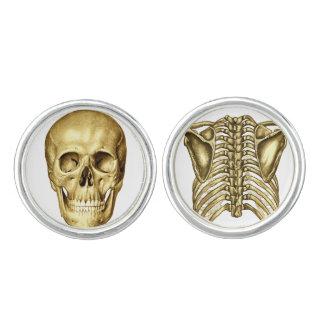 Skull Spine Anatomy Chiropractic Cufflinks