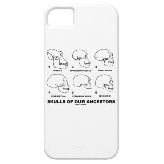 Skulls Of Our Ancestors (Six Skulls Evolution) iPhone 5 Cases