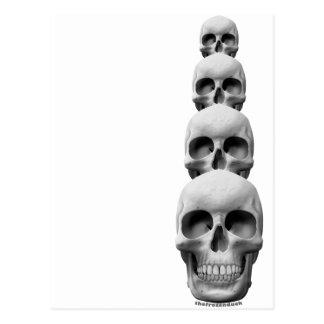 Skulls - Vertical Postcard