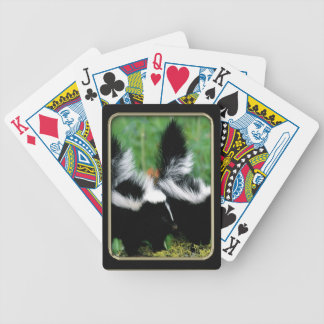 Skunks Photo Art Playing Cards