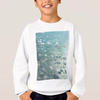Sky and clouds sweatshirt