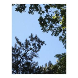 Sky and Tree Tops. Custom Flyer