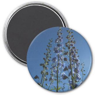 Sky Blue Delphiniums Magnet