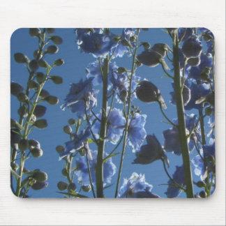 Sky Blue Larkspur Delphiniums Mouse Pad