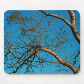 Sky Blue Mousepad