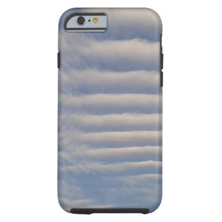 Sky cell phone case