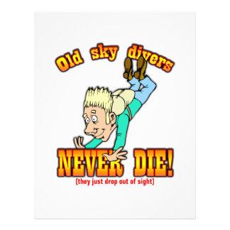 Sky Divers Flyer