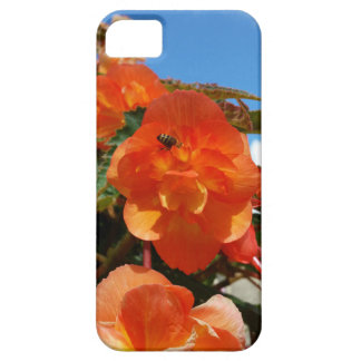 sky, flowers and bee iPhone 5 cover