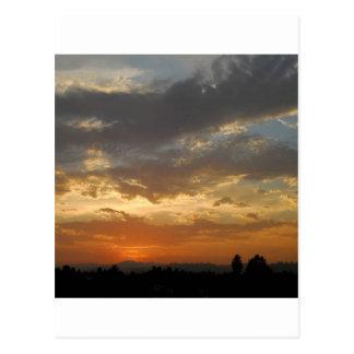 Sky Golden Sunset Postcard