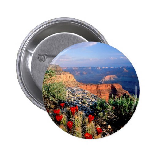 Sky Grand Canyon Spectical Pin