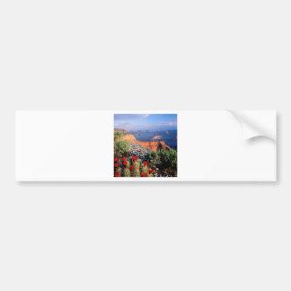 Sky Grand Canyon Spectical Bumper Sticker